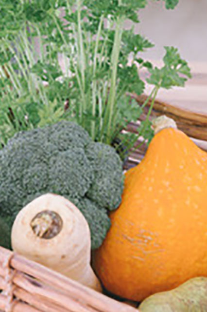 Ortomoleculaire voeding Health Boutique Oisterwijk